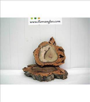 Verde RODAJAS DE TRONCO 20 cm. APROX.